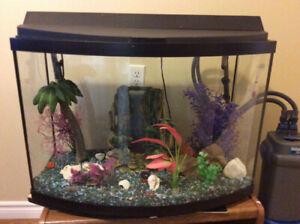 Fish Tank 38 gallon with many extras.