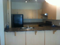AVAIL. IMMEDIATELY! 2 BEDROOM CONDO BY CLAREVIEW LRT/BUS STN.