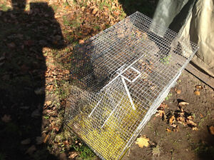 Pet cage ,animal cage ,2 floors with ramp , only 30 dollars Kitchener / Waterloo Kitchener Area image 8