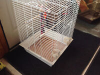 CAGE FOR SALE FOR SPECIAL  OF THE DAY