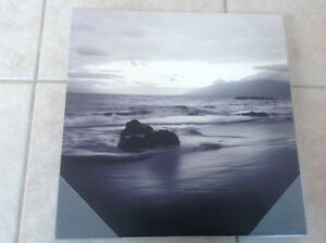 Canvas print picture ocean lake scene black and white new