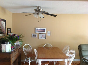 "52"" ceiling fan with 4 lights"