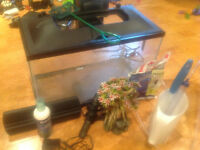 Marine land fishtank and accessories