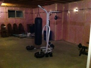 Speed and Heavy Bag, like new