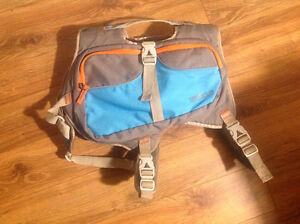 Cesar Millan dog backpack - like new