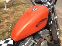 Delivery Available Stunning Low Mileage Harley Davidson XL 883 C Sportster VGC