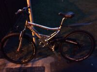 Mens Boss silver streaks mountain bike