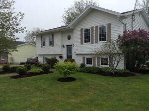 New price-Immaculate split level home in Herring Cove