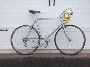 Rare find.  Vintage Eddy Merckx Professional. Campagnolo Record.