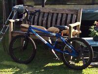Blue muddyfox BMX bike