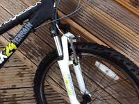 Kids mountain bike, Ridgeback mx24 terrain!