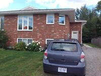 3 Bedroom Bright New Semi-Detached $1625 Avail Sept. or Oct. 1