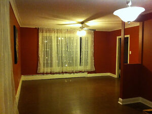 49 Grenfell Ave: 3 bdrm, 2 bathroom house, close to MUN