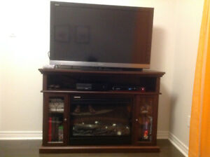 Sony Bravia 46 inch KDL-46EX500 and Electric Media Fireplace