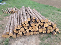 About 100 Unpeeled Cedar Posts and Rails
