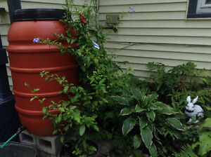 TRUCKLOAD-SALES: Plastic Terracotta coloured rain barrel