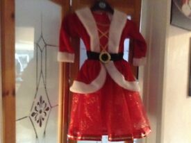 Girls Christmas dress age 3-4 yrs