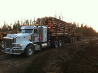 Class one CTL logging truck driver