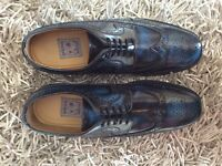 Mens shoes size 8 NEW BNIB Delicious Junction Upsetter Royale black/blue