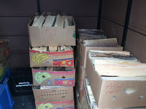 Firewood-Open All Weekend-By the Box....By the Cord..by the Pile Windsor Region Ontario image 9