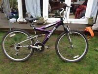 Cascade mountain bike