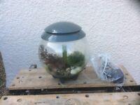 Nearly new biorb aquarium complete set up