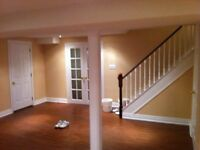Complete basement finished