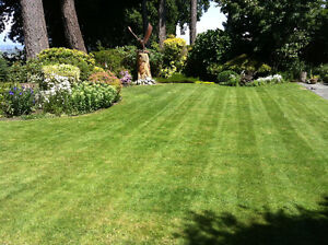 Professional lawn cutting. Small lots to several acres Cambridge Kitchener Area image 3