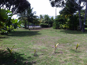 Beach front property for sale - COSTA RICA