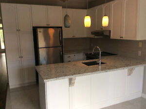 Kitchen cabinets with Cambria Quartz Counter and undermount sink