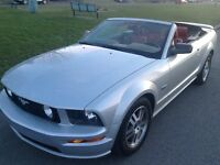 2005 Ford Mustang GT Convertible PRICE REDUCED!!