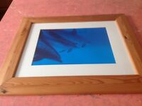 Large pine wooden framed DOLPHIN picture / framed print,
