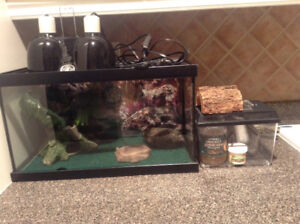 Leopard gecko tank, light and all accessories!