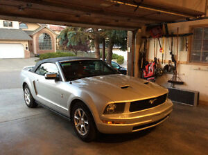 2005 Ford Mustang Interior Upgrade Package Convertible