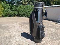 Leather Mizuno Golf bag