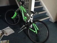 11-14 Teens Green Mountain Bike Very Good Deal