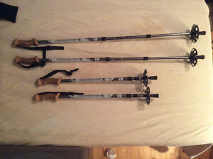 Bâtons de marche neuf- New walking sticks