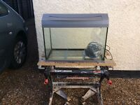Tetra complete tropical aquarium fish tank set up