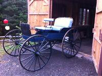 voiture chevaux