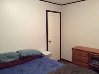 Room for rent in clean home