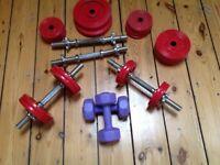 Weider dumbbell set of weights