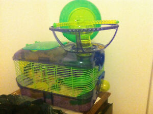 CAGE AND HAMSTER FOR SALE $40 OBO
