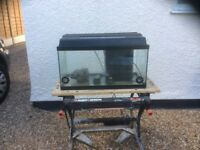 2FT complete aquarium fish tank set up