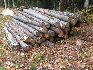 1 corde of spruce 9feet long for saw mill or firewoods