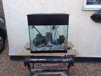 Sea bray complete tropical aquarium fish tank set up