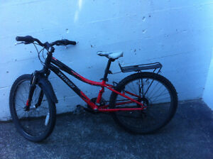 Specialized 12 in.frame mountain bike  $200.00