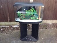 Fish tank and stand 30 inches long