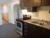 Totally renovated Large 2 bedroom apartment