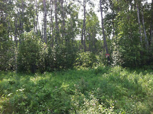 Conklin AB Land for Sale
