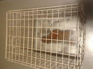Large metal dog kennel